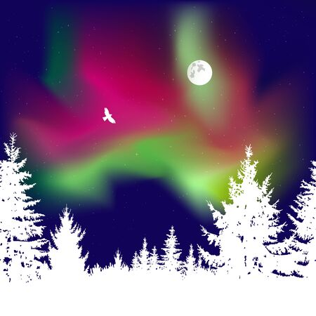 Abstract white silhouette of coniferous trees on the background of colorful sky. Flying eagle. Moonlight. Green and red northern lights. 免版税图像