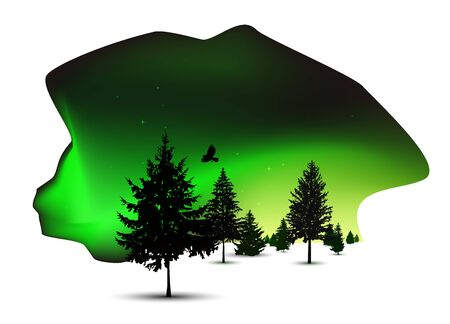 Silhouettes of pine trees. 3d location. Spot of night sky. Northern lights. Green tones. Reklamní fotografie