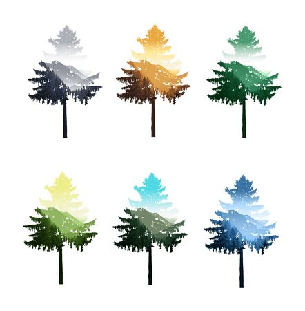 Silhouettes of coniferous tree with double exposure of nature panorama. Seasons.