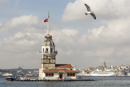 maiden tower and seagull in istanbul