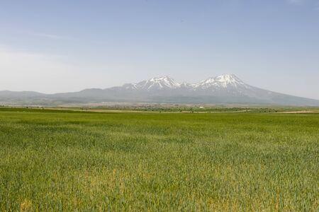 snowy mountains in summer season