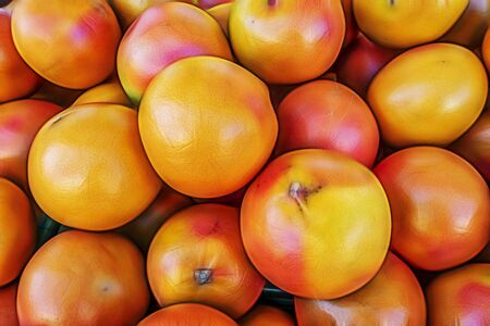 grapefruits in grocery