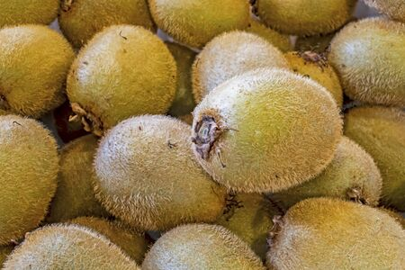 close up shelled kiwi fruit in market stall Stock fotó