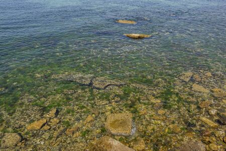 seaside cliffs and seaweeds 스톡 콘텐츠