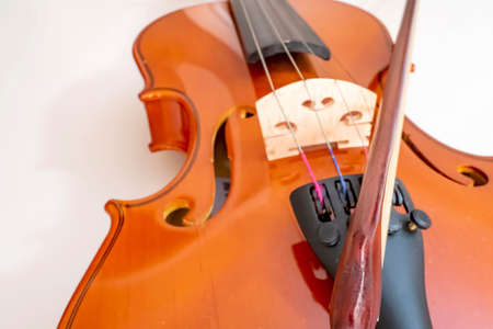 close up violin on white background