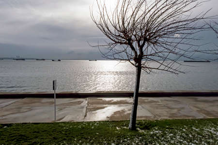 winter and snow view from the marmara sea.