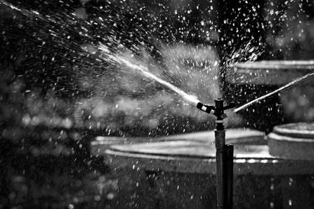 Sprinkler Stock Photo - 12721003