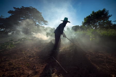 The Asian farmer burnt the unnecessary in the farm to prepare the new agricultural activity. Stock Photo