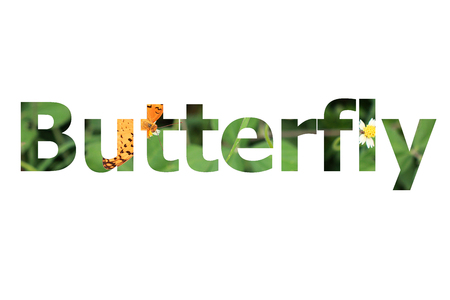 butterfly background: The word Butterfly with butterfly background inside