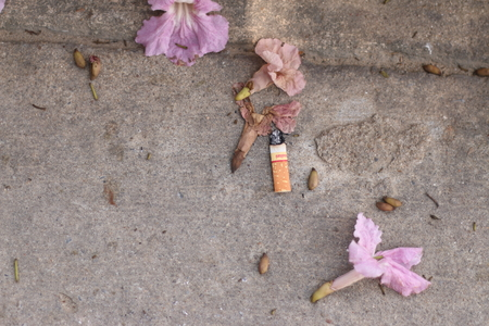 the ends: Fag ends and flowers on the ground.