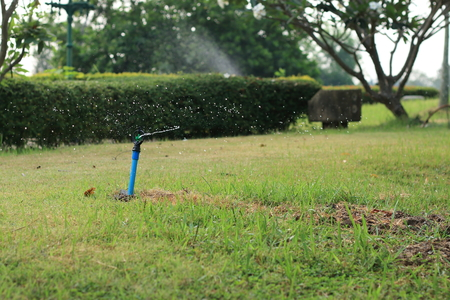 spraying: Automatic sprinkler spraying water in green grass garden Stock Photo