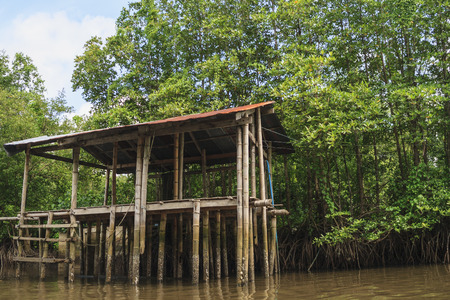 architecture bungalow: Rest-house in the mangrove forest