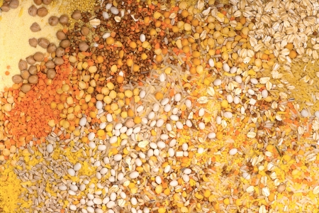 Mix of various grains background photo