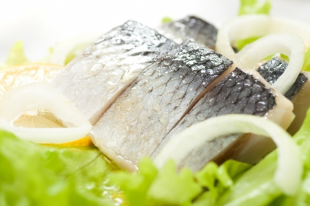 Herring with onion close-up shot