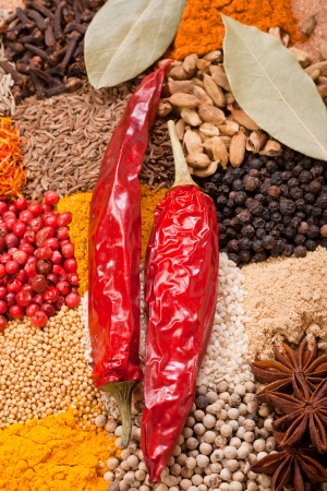 Two red peppers on assorted spices photo