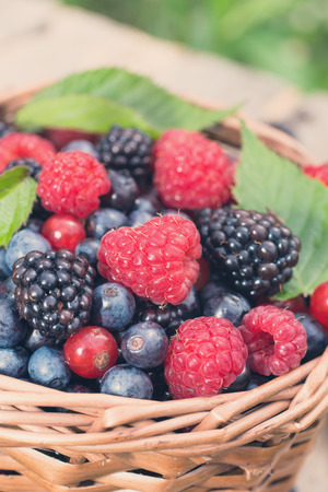 Basket of assorted ripe  wild berries photo