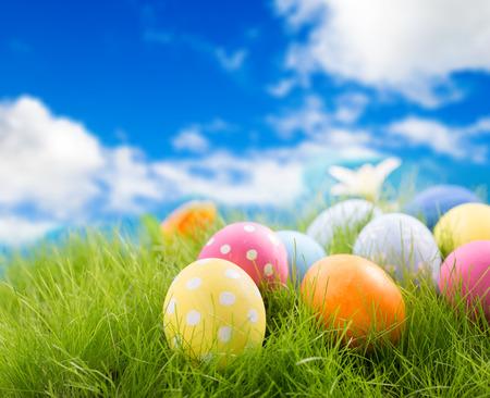 huevo blanco: Los huevos de Pascua adornados en la hierba en el fondo del cielo Foto de archivo