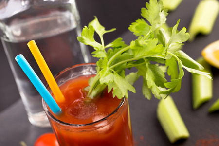 Bloody Mary cocktail with celery closeup photo