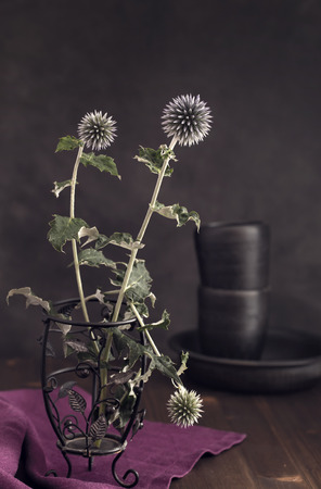 toned: Echinops flowers on table still-life toned