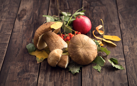 cep: Wild edible cep mushrooms on wooden table rustic style Stock Photo