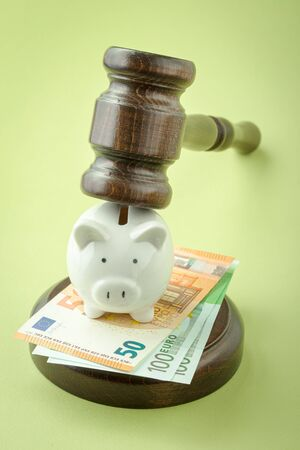 Gavel with piggy bank and euro