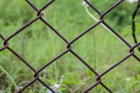 netting: Wire netting or mesh fence Stock Photo