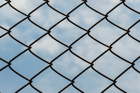 Wire mesh or netting fence against the sky photo