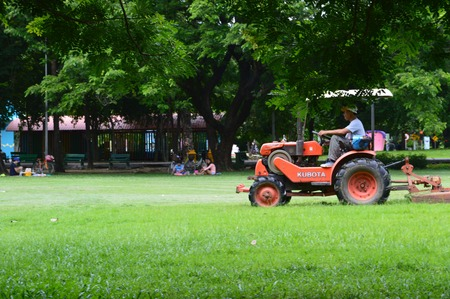 cut grass: Mowers , lawn , cut the grass , people , golf , gardens , trees , green leaves
