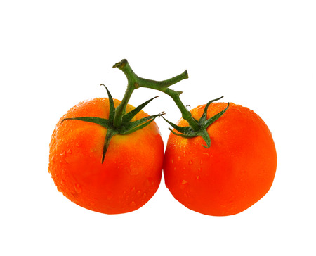 Tomates frescos, fondo blanco