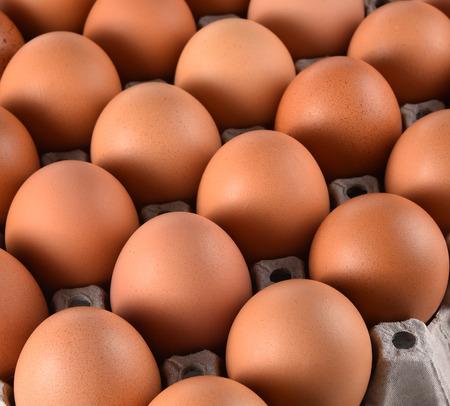 Eggs in paper block Stock Photo