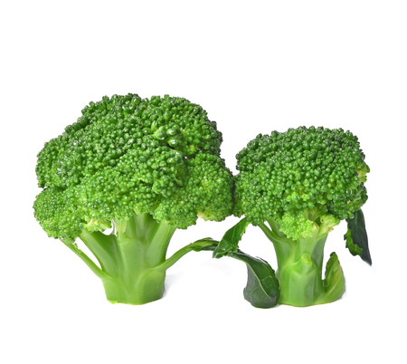 Broccoli cooked isolated on white background. Stock Photo