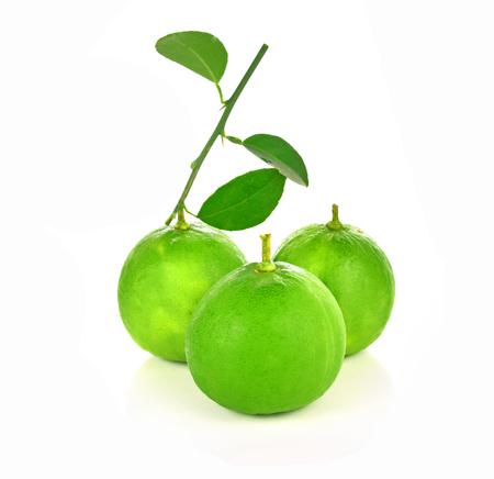 Lemon green leaf on white background Stock Photo