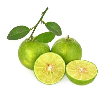 Lemon green fresh  leaf on white background