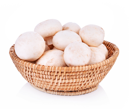 agaricus: Agaricus bisporus mushrooms  basket on white background