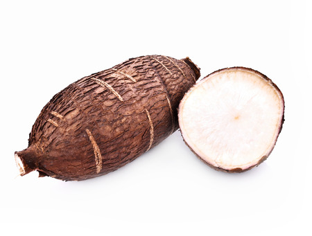 cassava: Cassava root isolated on whith background
