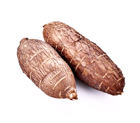 Cassava root isolated on whith background