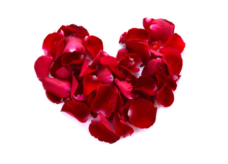 scattered in heart shaped: A red heart is formed by rose petals.