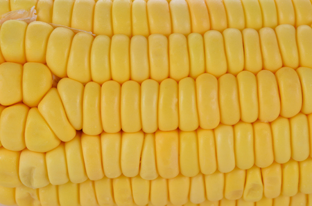 corn kernel: A group of yellow corn kernel into the background. Stock Photo