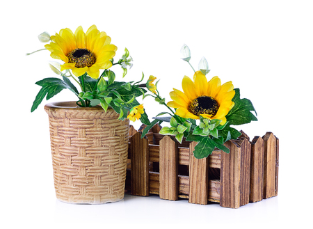yellow gerbera isolated on: Gerbera bouquet flower of yellow flowers isolated on white background Stock Photo