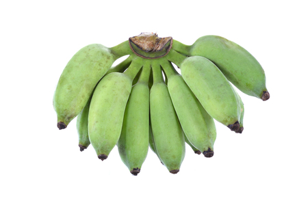 cultivated: Bananas,Thai cultivated banana, Thai bananas on on white background. Soft focus