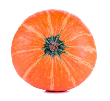 seeds of various: Pumpkin Japan. Stock Photo