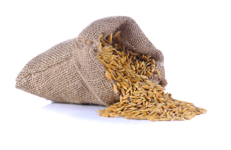 kitchen appliances: Hemp sack with brown paddy rice seed on white background.