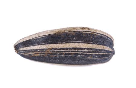 Sunflower seeds isolated on white background close-up Stock Photo