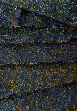 dry seaweed  background