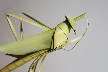 grasshoppers: Grasshoppers made of coconut leaves