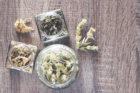yarrow: Wild mountain tea (Sideritis syriaca) with mint and yarrow herbs Stock Photo