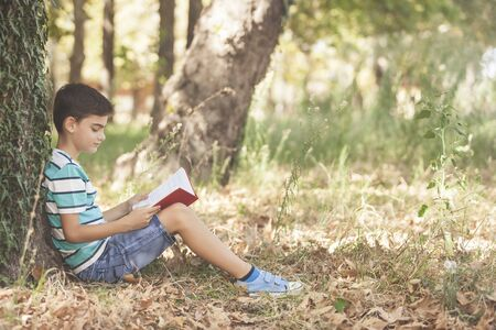 Young boy reading at the park