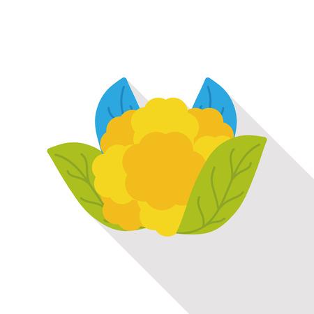 cauliflower: vegetable cauliflower flat icon