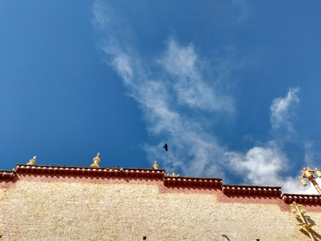 crows flying over temple in Tibet