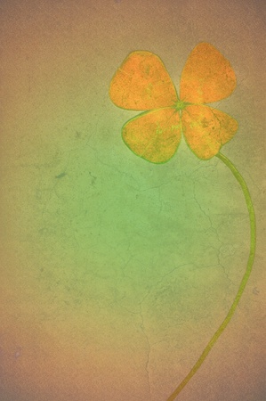 Four-leaf clover postcard Stock Photo - 11234982